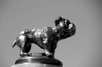 Bentley Speed Six Blue Train Special 1931 Hood Ornament Bulldog